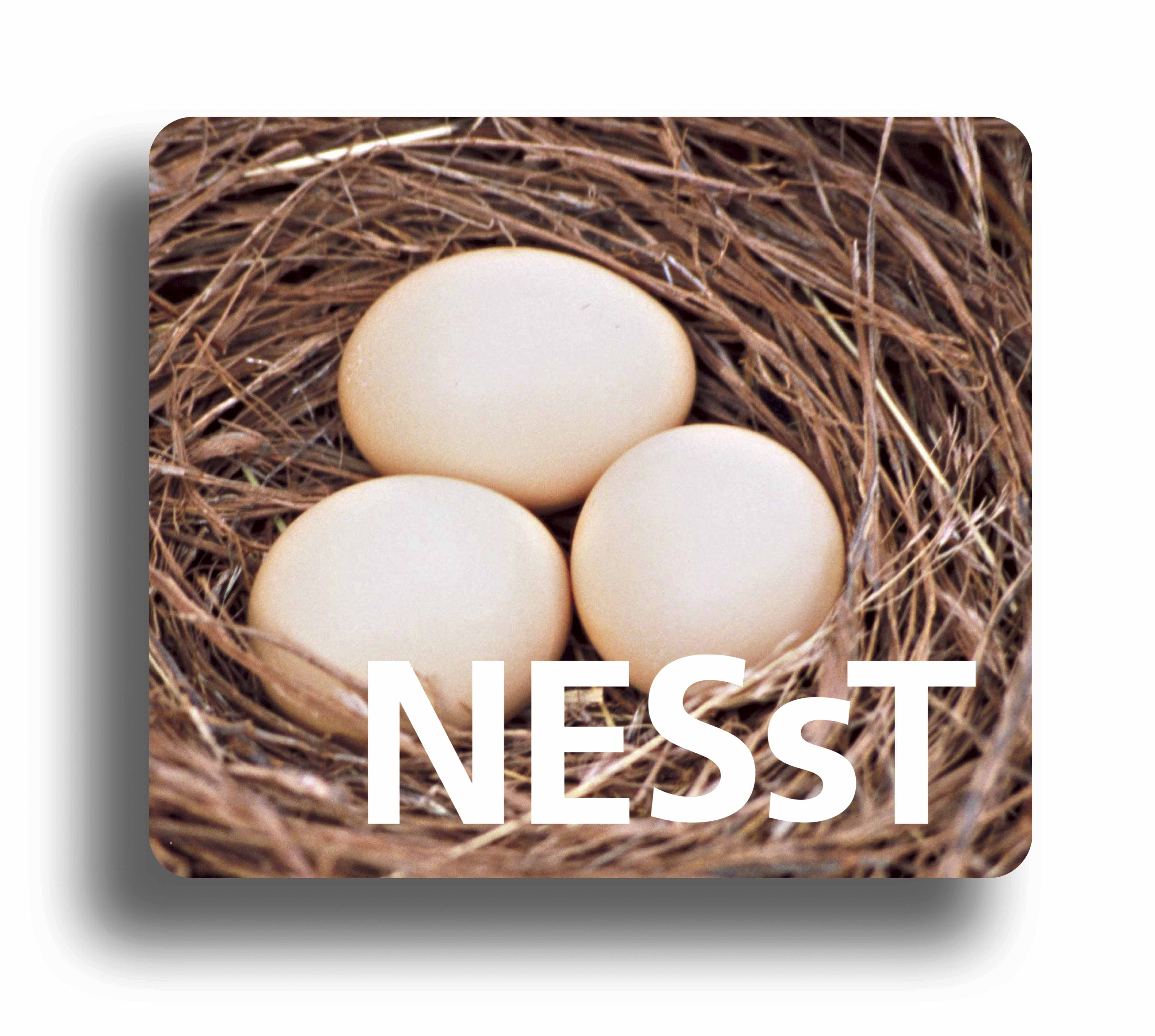 NESsT Foundation Hungary